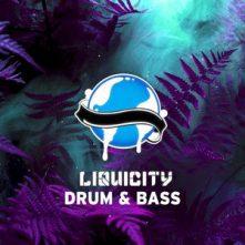 Liquicity playlist